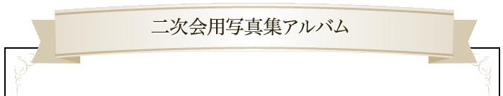 二次会用写真集アルバム
